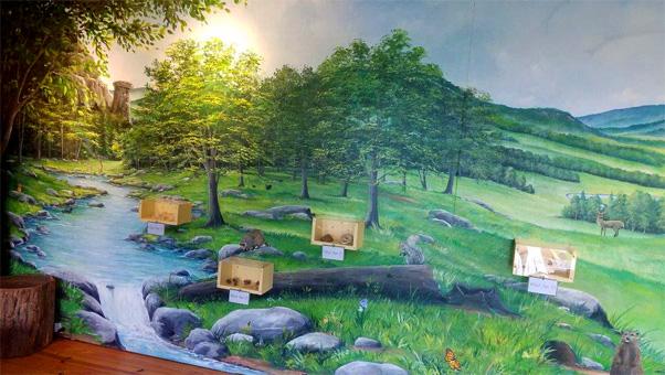 Fantastic Chimney Rock State Park Nature Bathroom Murals Download Free Architecture Designs Intelgarnamadebymaigaardcom